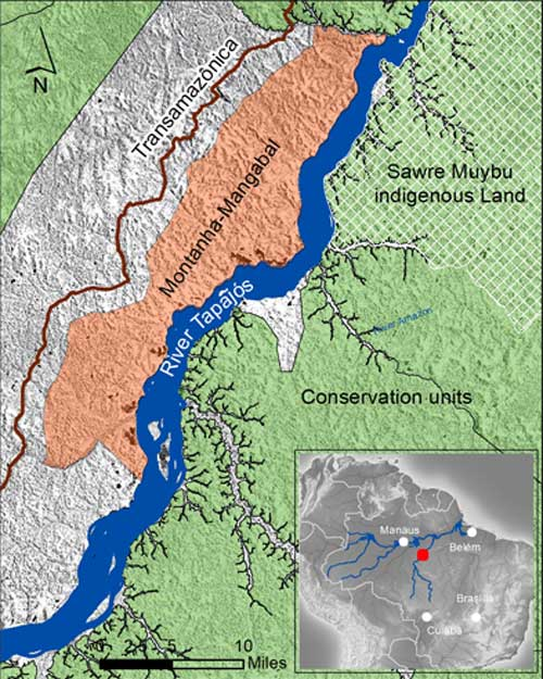 A map of the Montanha-Mangabal riverside community. The Sawre Muybu indigenous land on the opposite of the river is claimed by the Munduruku.